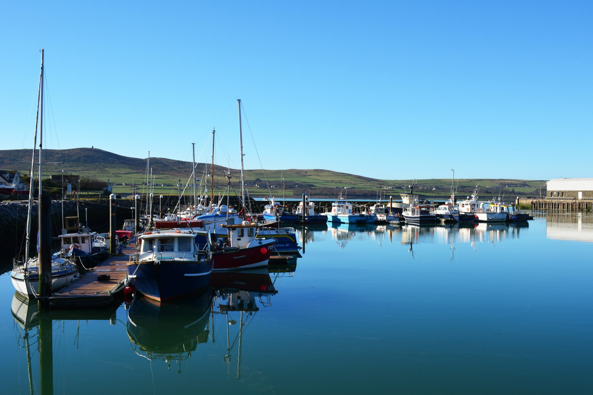 Dingle Town Marina