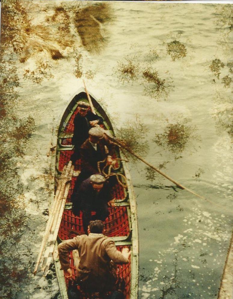Great Blasket Island Boat