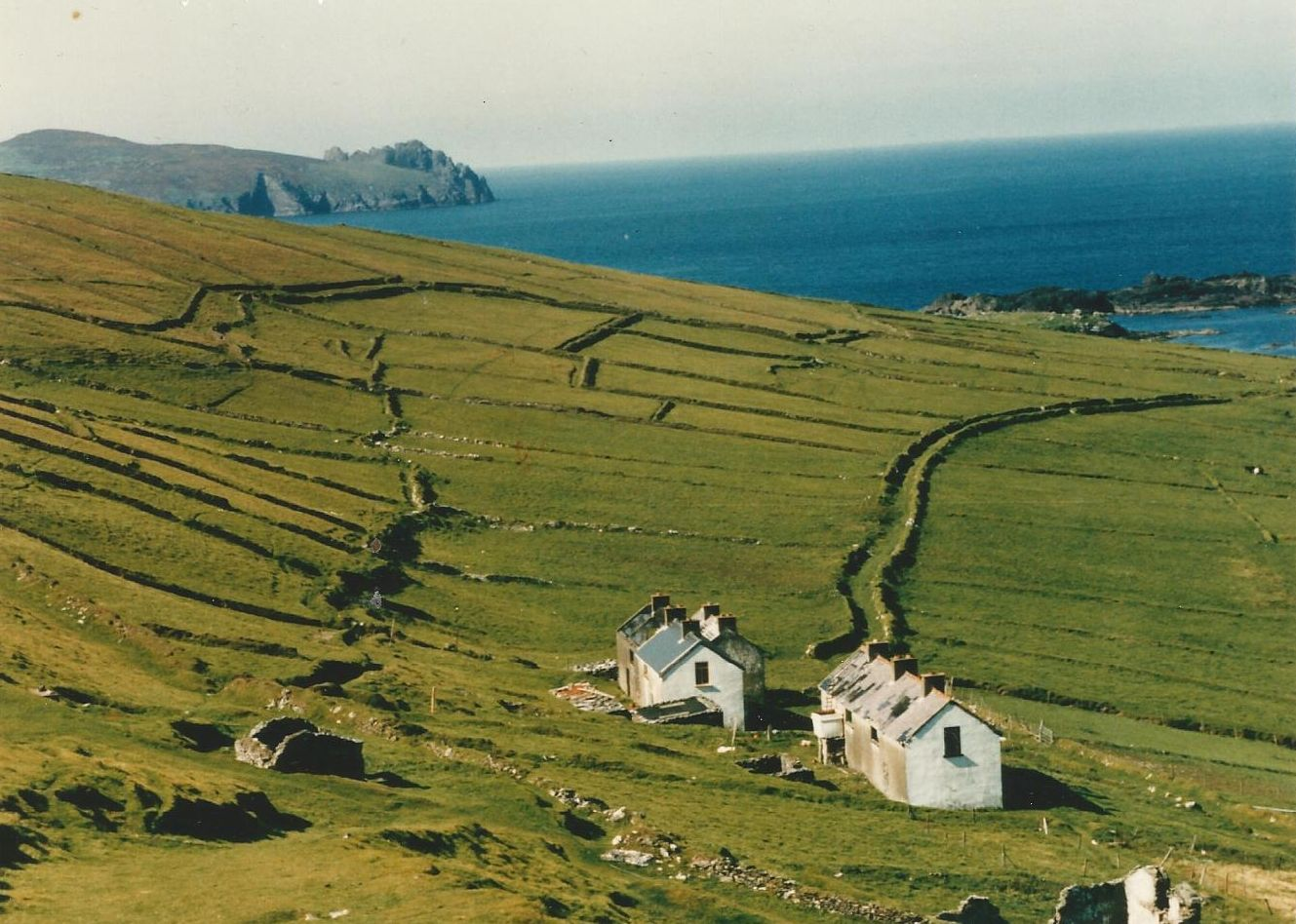 great blasket island accommodation and boat tours