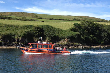 Things to Do in Dingle: The Great Blasket Island Experience
